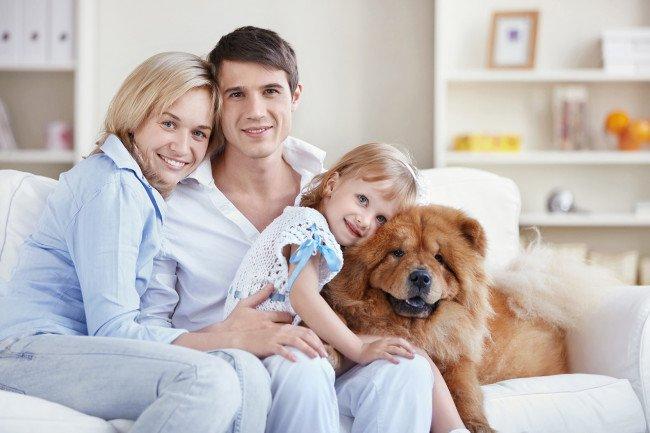 Faire le choix d'une maison avec des animaux de compagnie